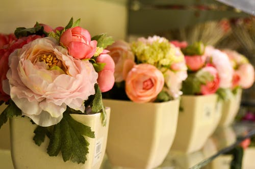 Free stock photo of artificial flowers, beautiful flowers, bloom