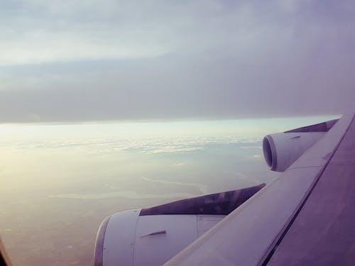 Gratis arkivbilde med flytur, passasjer