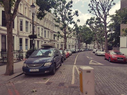 Foto d'estoc gratuïta de barri, estiu, paret blanca