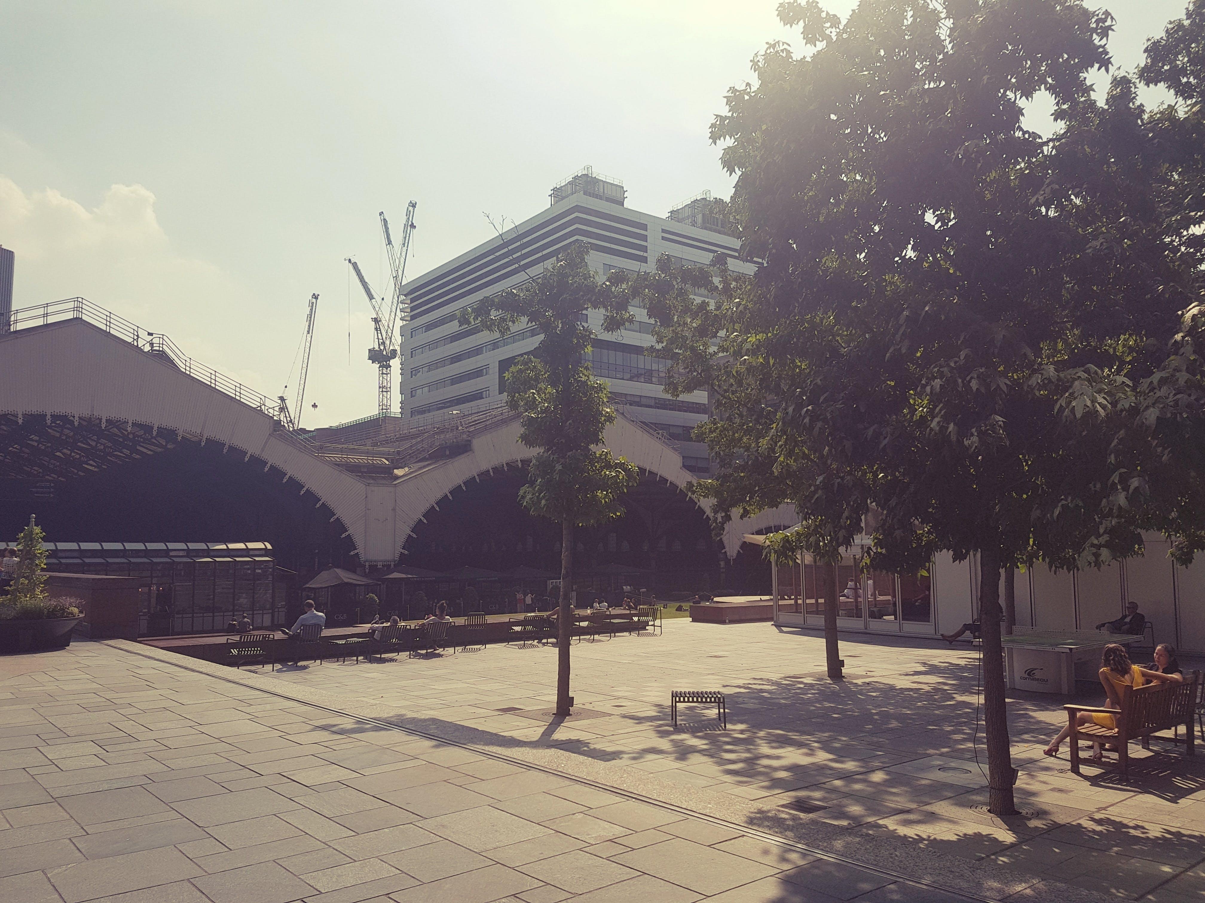 Free stock photo of summer, summer sun, train station