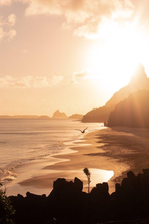 Bright sun shining over sea in evening