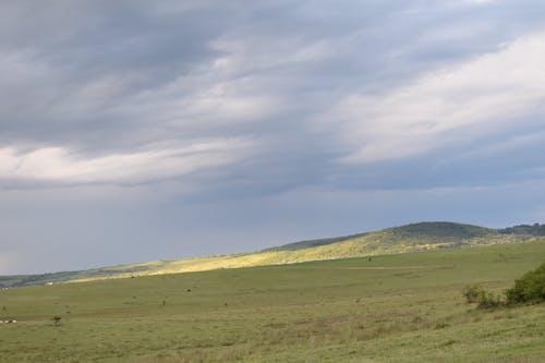 Gratis arkivbilde med berg, gras, himmel, landschaft