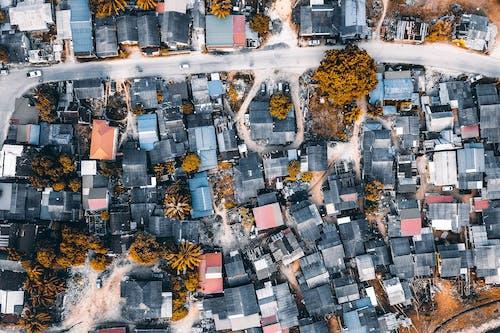 Gratis lagerfoto af arkitektur, by, bygning, forretning