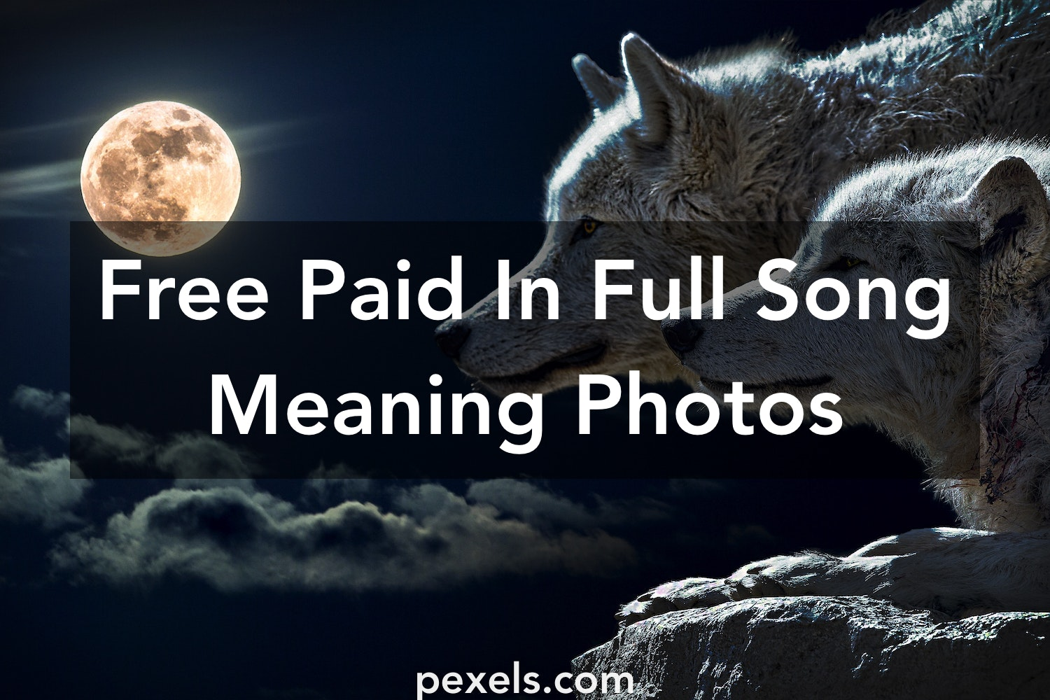 200+ Amazing Paid In Full Song Meaning Photos · Pexels