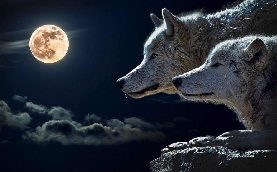Full moon phse