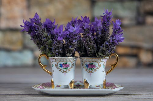 Free stock photo of background, crockery, cups, flowers