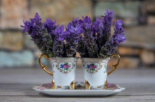 Gratis stockfoto met aardewerk, achtergrond, bekers, bloemen