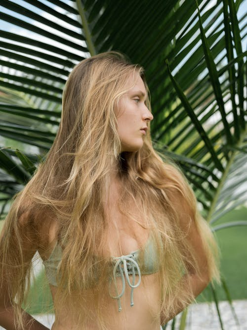 Photos gratuites de arbre, attirant, bain de soleil, bikini
