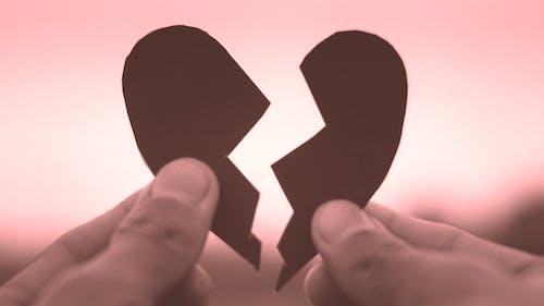 Foto profissional grátis de amor, com o coração partido, emoções, isolado