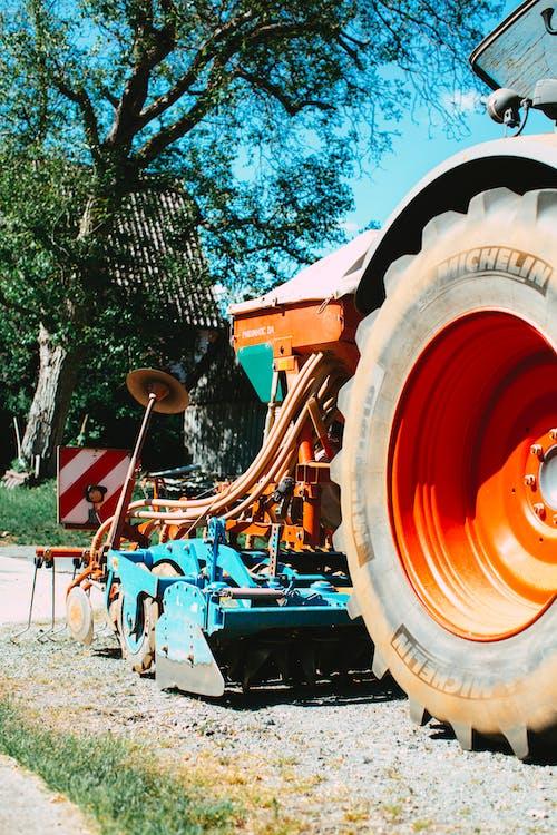 คลังภาพถ่ายฟรี ของ การเกษตร, เครื่องจักรกลการเกษตร, เมล็ดพันธุ์