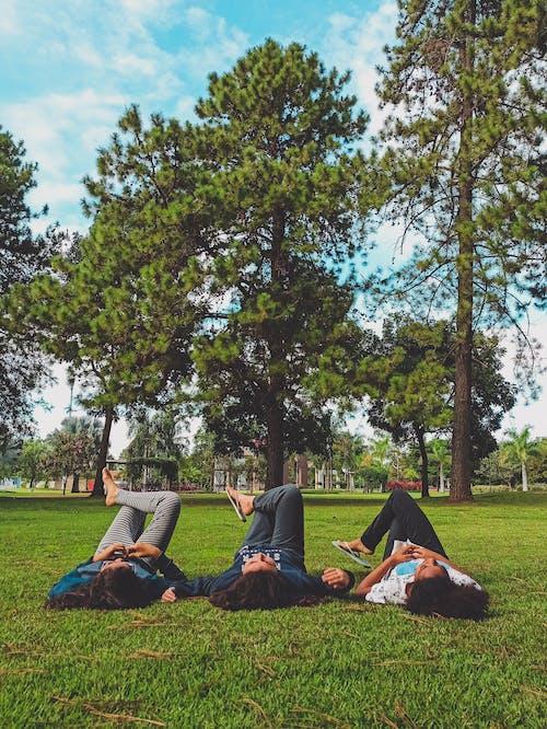 People Lying on Green Grass Field Under Green Trees