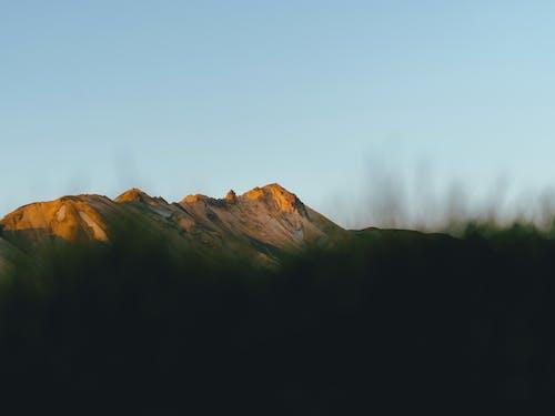 Foto profissional grátis de alvorecer, amanhecer, ao ar livre, árvore