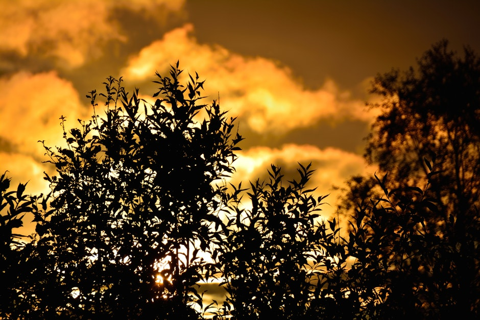 clouds, dawn, dust