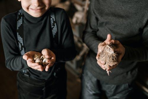 Crop boys with quail and quail eggs