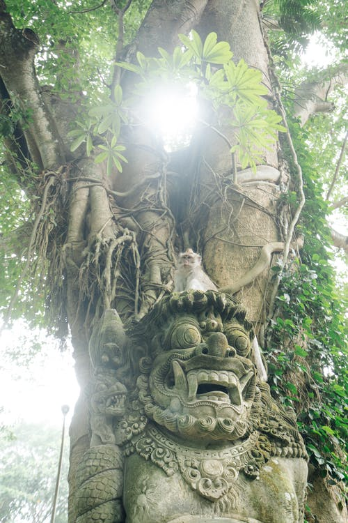 Funny monkey sitting on mythical creature statue
