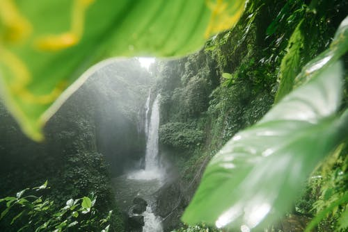 Picturesque tropical waterfall in middle of jungles