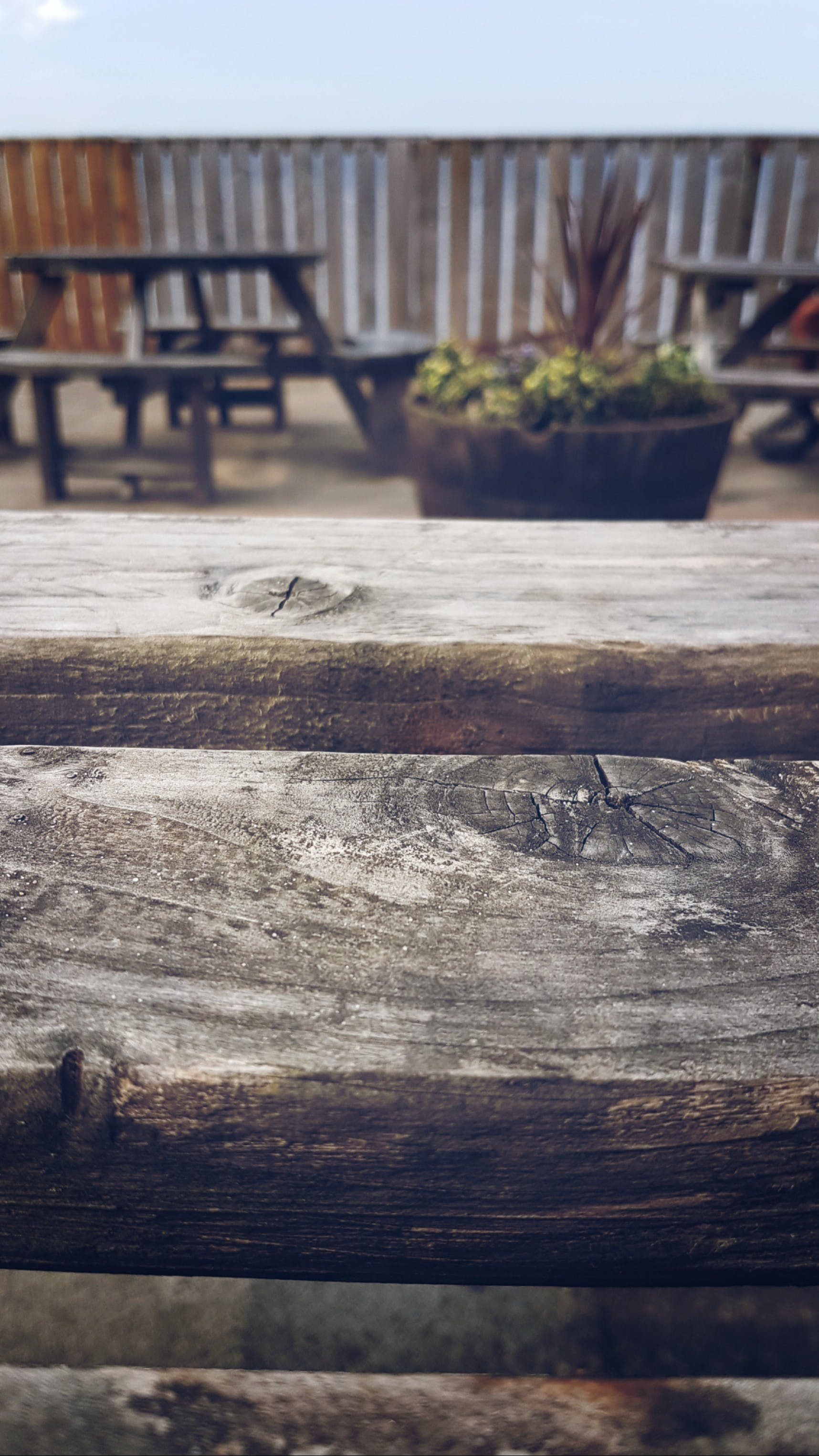 Free stock photo of chill, holiday, outside, table