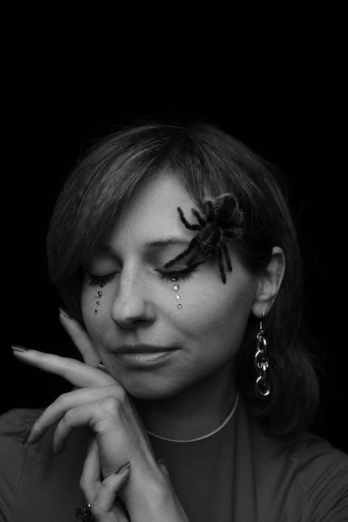 Photos gratuites de araignée, arrière-plan noir, beauté