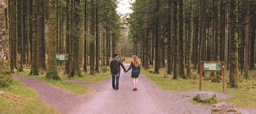 Free stock photo of couple goal, couple holding hands, couple in love