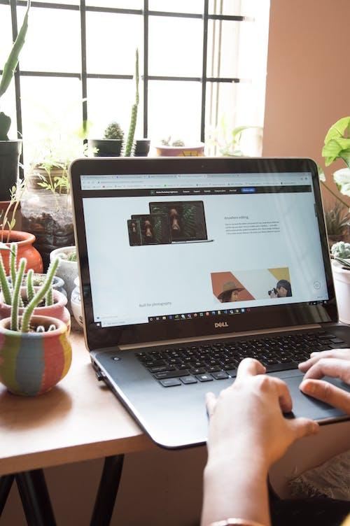 bağımsız çalışan, bilgisayar ekranı, blog yazarı içeren Ücretsiz stok fotoğraf