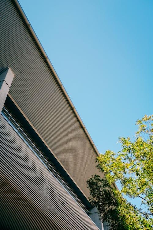 Kostenloses Stock Foto zu architektur, brücke, business, fenster