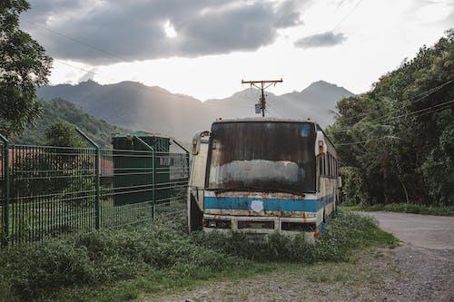 가벼운, 경치, 교통체계, 기관차의 무료 스톡 사진