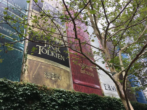 Photos gratuites de biblioteca pública, capa de livro, livro