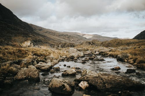Photos gratuites de aube, bord de mer, brouillard, caillou
