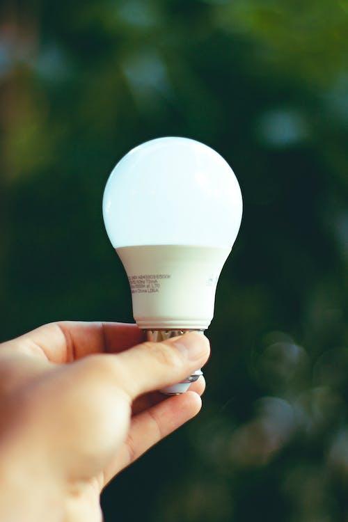 Hand Holding White Light Bulb
