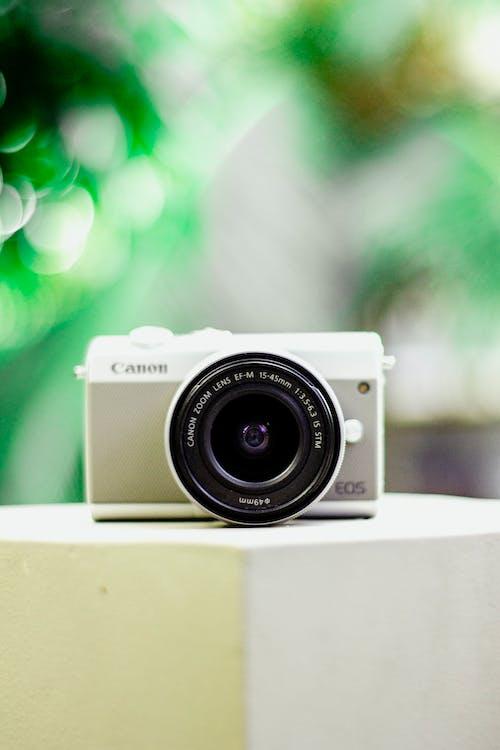 bulanıklık, canon, dijital kamera, fluluk içeren Ücretsiz stok fotoğraf