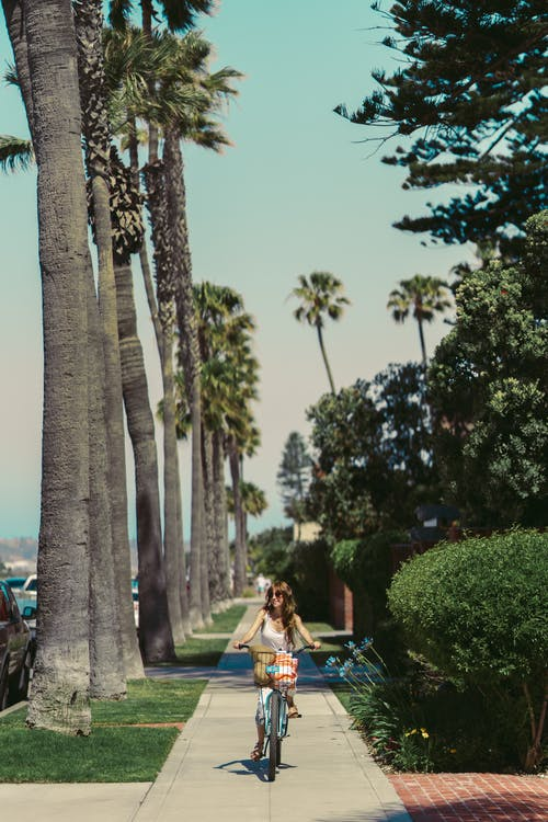 Woman in White Dress Sitting on Bench Near Palm Trees