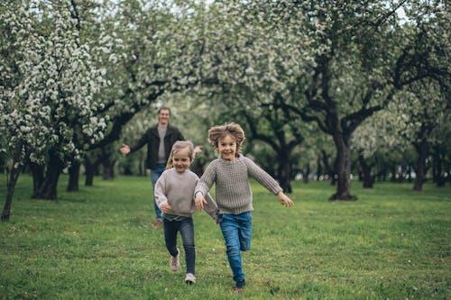 Imagine de stoc gratuită din aleargă, arc, băiat