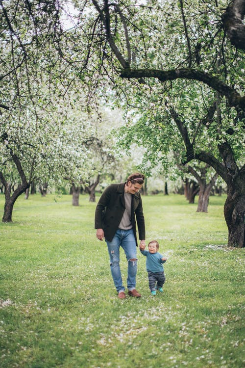가족, 걷고 있는, 걷기, 공원의 무료 스톡 사진