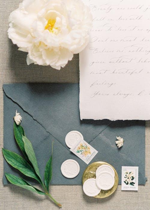 Libro Blanco Con Flor Blanca