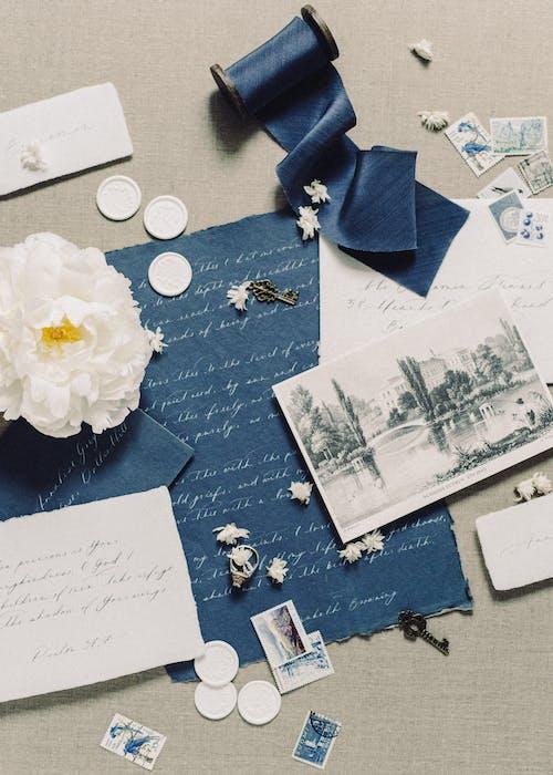 Flor Blanca Sobre Papel Blanco