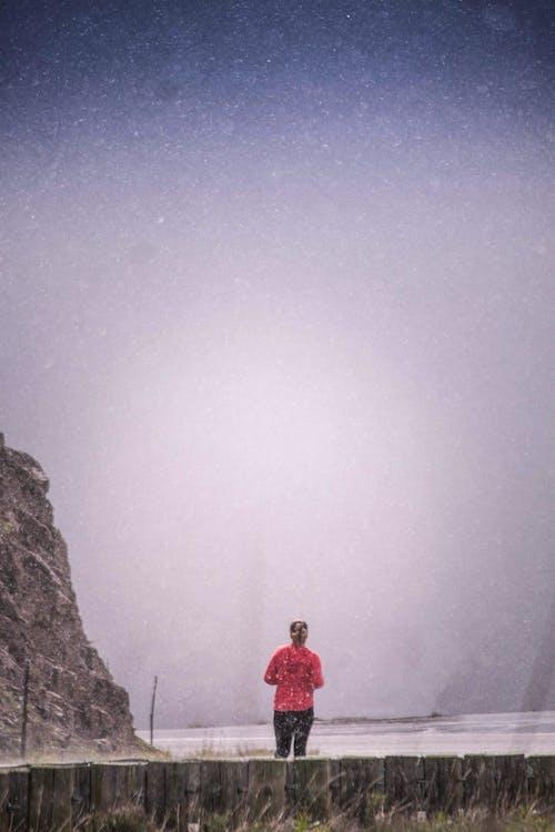 겨울, 보라색 하늘의 무료 스톡 사진