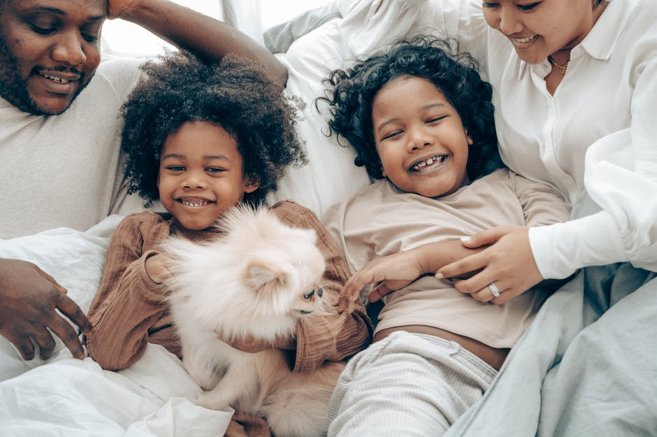 Estate Planning and Pet Care: Everything You Need to Know
