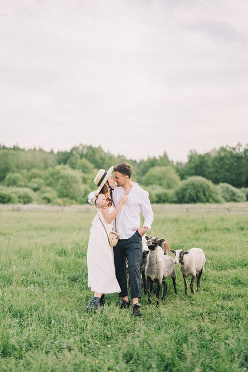 Couple Walking on a Field With Sheep