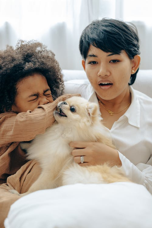 Ethnic mother watching TV with kid playing with dog at home