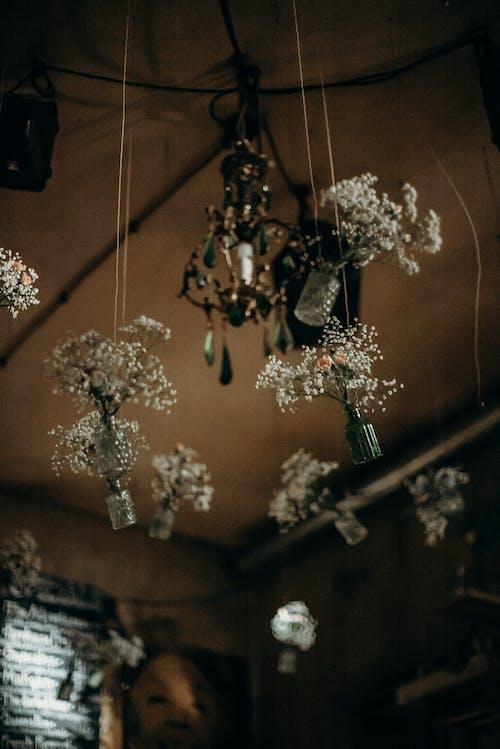 Darmowe zdjęcie z galerii z bar, bistro, butelki