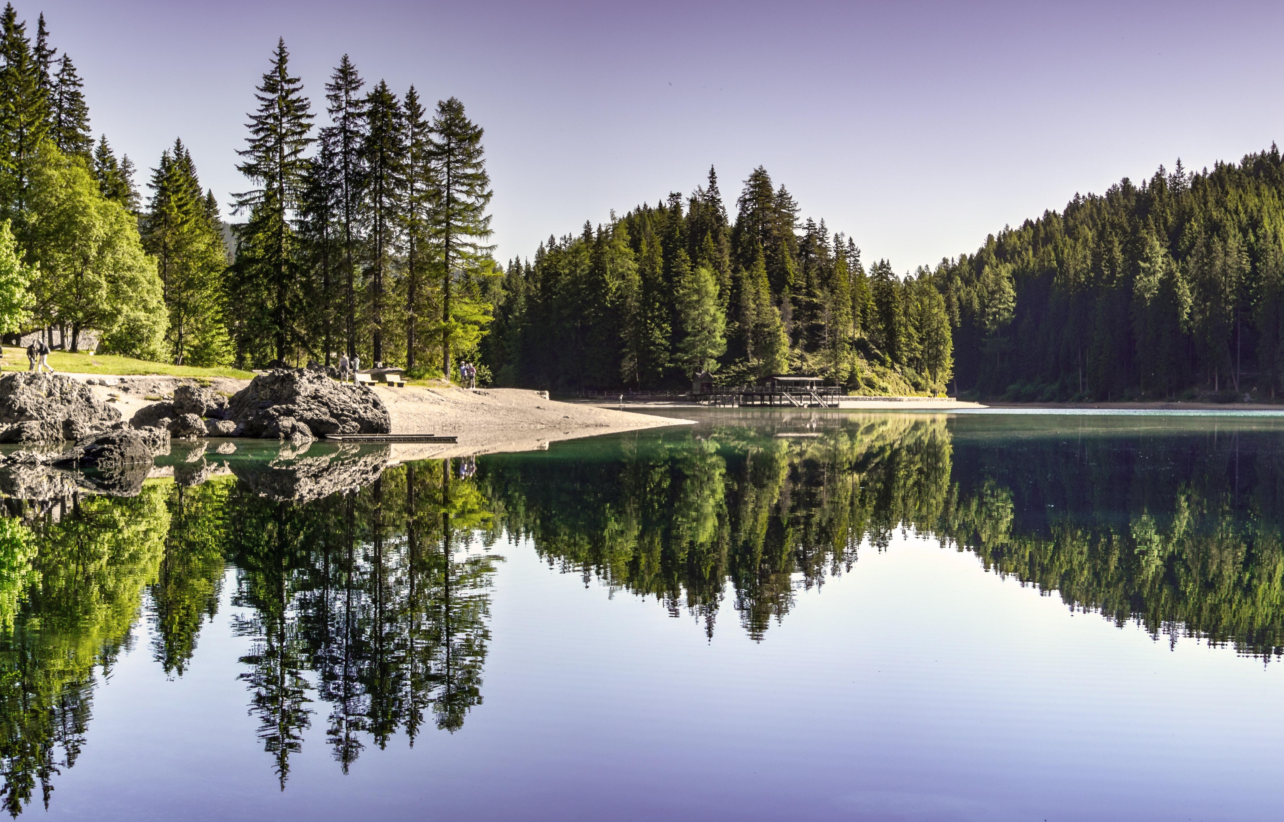 Body of Water Near Trees by eberhard grossgasteiger