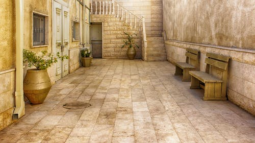 Old house interior with tiled floor and potted plants