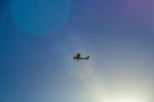 Free stock photo of aeroplane, air, airplane, blue