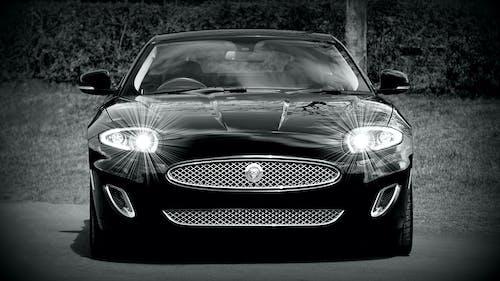 Foto profissional grátis de carro esportivo, carros jaguar, carros premium, coupe