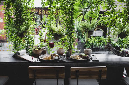 Lunch for two placed on table against window with plants