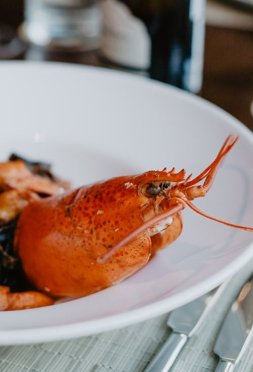 Delicious boiled lobster on plate in restaurant