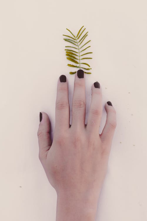 Faceless person touching small leaf