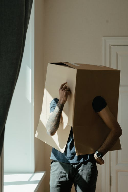 Person in Blue and White Plaid Shirt Holding Brown Cardboard Box