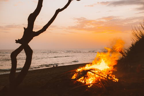 Campfire on beach during sunset time