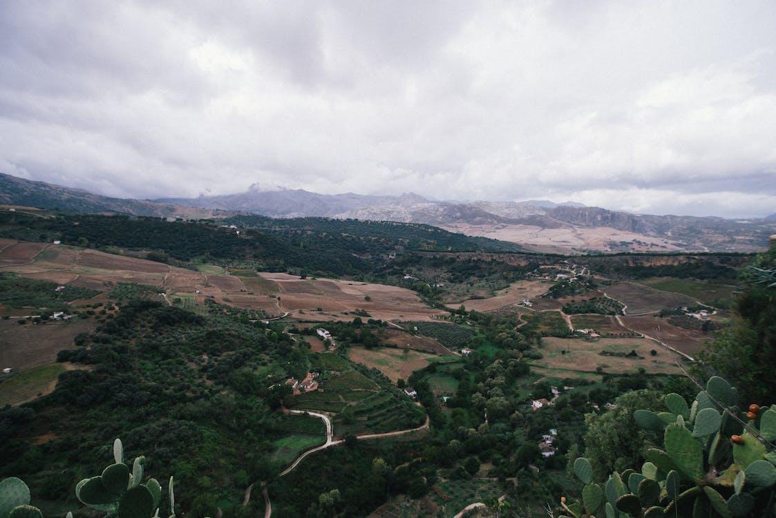 Árboles Verdes Y Montañas Marrones Bajo Nubes Blancas